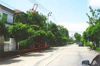 https://www.ohoproperty.com/139147/ธนาคารทหารไทยธนชาต/ขายบ้าน/บางขุนกอง/บางกรวย/นนทบุรี/