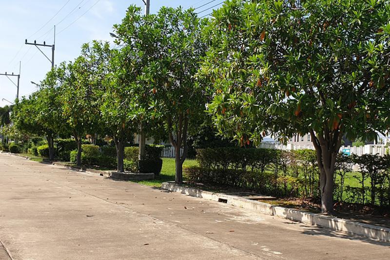 หมู่บ้านโอเรียบเท็ลบีช รีสอร์ท ถนนเพชรเกษม ชะอำ ชะอำ เพชรบุรี