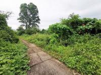 https://www.ohoproperty.com/138580/ธนาคารทหารไทยธนชาต/ขายที่ดินเปล่า/รัษฎา/เมืองภูเก็ต/ภูเก็ต/