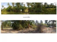 ที่ดินเปล่าแปลงใหญ่หลุดจำนอง ธ.ธนาคารธนชาต กุยบุรี กุยบุรี ประจวบคีรีขันธ์