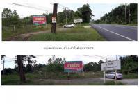 https://www.ohoproperty.com/23507/ธนาคารธนชาต/ขายที่ดินเปล่าแปลงใหญ่/คึกคัก/ตะกั่วป่า/พังงา/